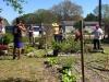 FWAF Fellsmere Garden 4