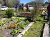 FWAF Fellsmere Garden 5