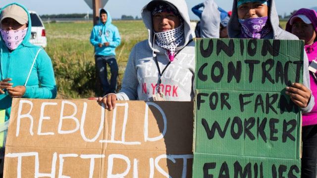 leder_labornotes-reprint_farmworkers_soemthings_850_566